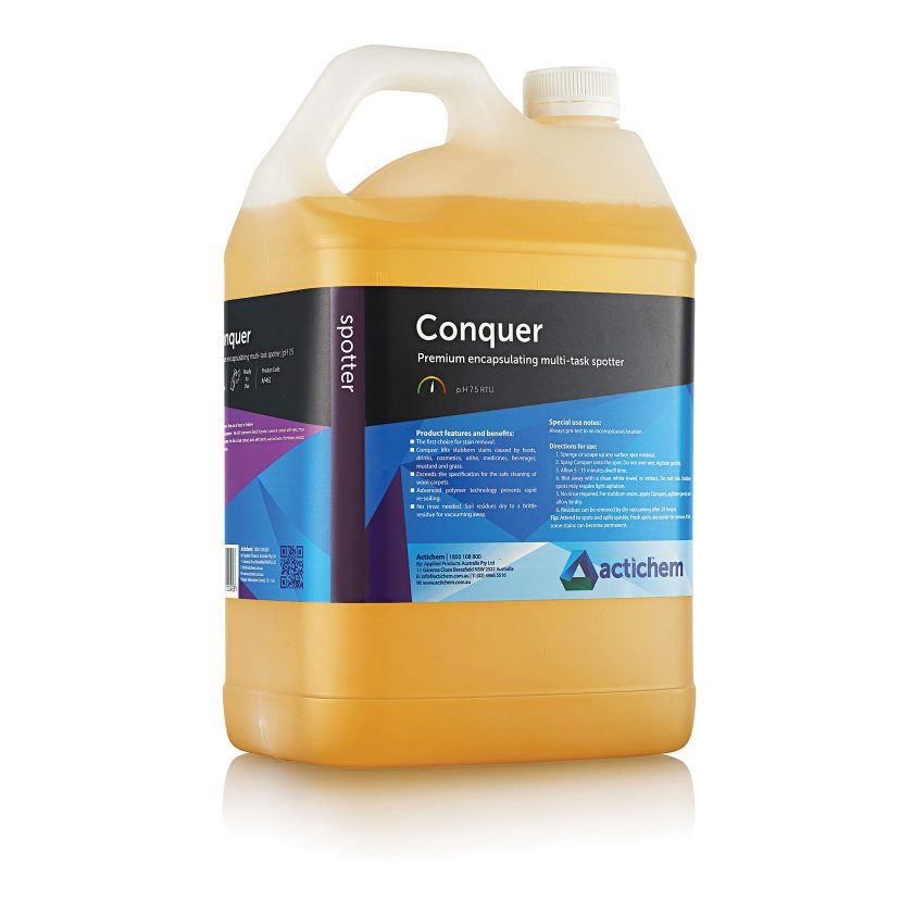 Stain remover for carpets and upholstery
